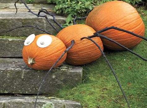 Pumpkin slates