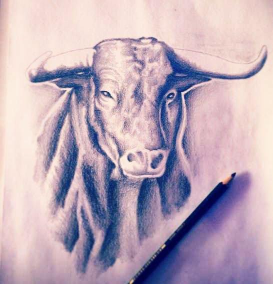 Best 27 Bull Tattoo Images For Men & Women